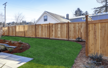 Cedar Vs Pine Fence: Which Is Better for Your Home?